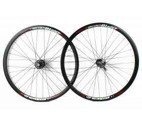 Wheelset  w/Coaster Brake Weinmann DP18  - Black